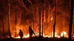 australian-fire