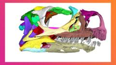 A-Micro-CT-scan-of-the-skull-of-the-newly-discovered-dinosaur-named-Ngwevu-intloko.