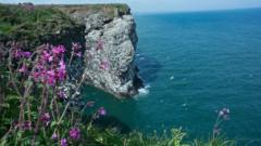 uk-coast