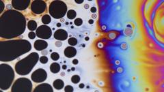 An image of a soap bubble