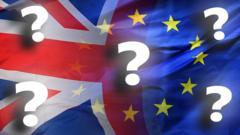 UK-EU-FLAGS-QUESTION-MARKS.