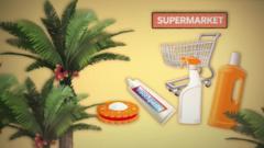 Palm oil graphic