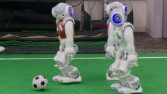 Football playing robots