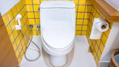 Toilet shown in cubicle