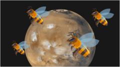 bbc news mars insight landing - photo #40
