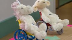 cuddly toy in wheelchair