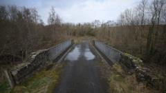 Northern Ireland border bridge