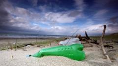 beach-litter.