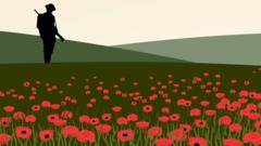 Graphic showing soldier in poppy field.