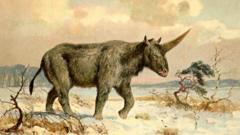 'Siberian unicorn'
