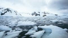 Antarctic.