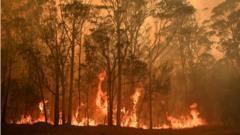 australia-fires-burning.