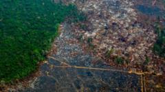 Deforestation-in-Brazil.