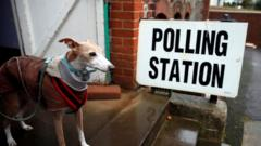 Dog in front of a polling station