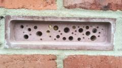 Bee brick.