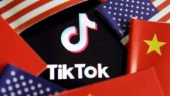 Chinese and U.S. flags are seen near a TikTok logo