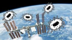 Bugs flying round the ISS.