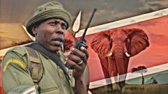 Kenyan-Ranger-African-Elephant.