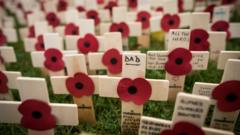 Poppies and crosses are displayed at the official opening of the Field of Remembrance at Royal Wootton Bassett, in the grounds of Lydiard House and Park near Swindon