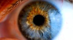 an image of an eye