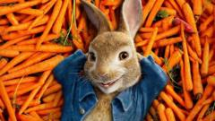 Peter Rabbit on a bed of carrots