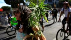 A woman carries a marijuana plant during a march for the full regularization of cannabis