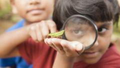 kid-looking-at-bug-through-magnifying-glass.
