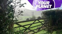 A picture of a gate and the your planet logo