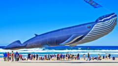 giant-whale-kite.