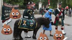 Queen pictures with Shetland pony and lots of poo emojis