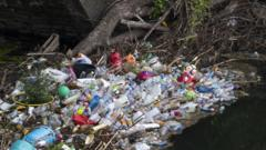 Plastic waste caught on a river bank