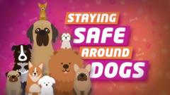 Staying safe around dogs graphic.