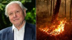 david-attenborough-australia-bushfires