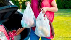 woman-holding-plastic-bags.