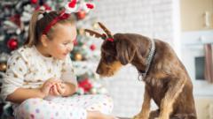 girl-pyjamas-christmas-boppers-with-dog.