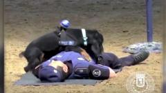 A police officer is lying on the ground with a dog on top of him.