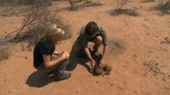 What you can learn from elephant poo?