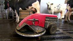 Robot being used in Scottish farm