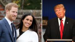 harry,meghan,trump