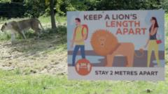 Whipsnade Zoo.