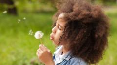 A girl blowing a dandelion