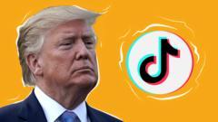 Trump and TikTok logo
