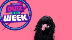 Quiz-of-the-week-logo-next-to-dog.