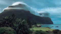 The Gnarled Mossy Cloud Forest on Lord Howe Island