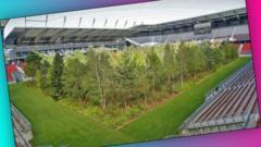forest-in-football-stadium.