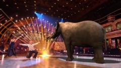 strictly-elephant