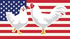 chicken-america-flag.