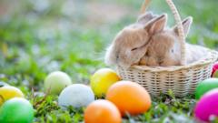 rabbits-in-a-basket-surrounded-by-colourful-eggs