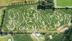 Lion-king-maze.