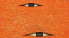 image of a roof which is orange and the windows look like eyes